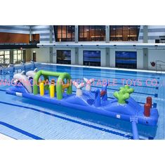 Double Dolphin 12m Aqua Run Inflatables , Inflatable Water Island For Pool