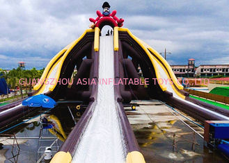 Cartoon Theme Giant Inflatable Slide With Three Lanes Silk - Screen Printing