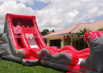 China Colorful Hippo Water Slide / Inflatable Wave Water Slide With Silk Printing factory