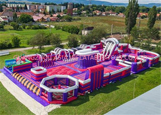 Purple And Blue Indoor Inflatable Theme Park With PVC Tarpaulin Material