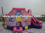 China Inflatable princess mini bouncer company