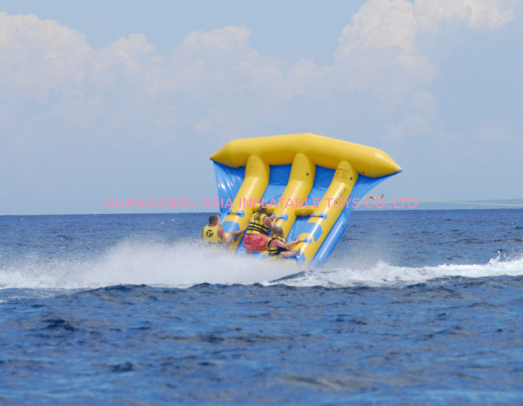 Funny Air Sealed Inflatable Flying Fish Tube with CE / UL Certificate supplier